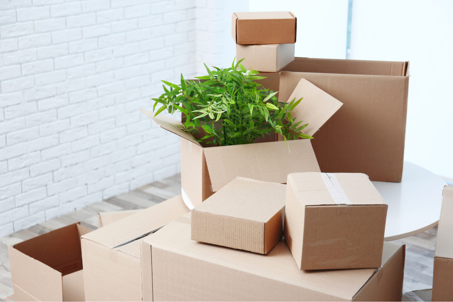 Pro Packing Tips   How To Pack For A Move   MetroMovers